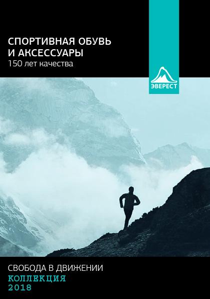 Анна Шашкова. Рекламная брошюра (дипломный проект)